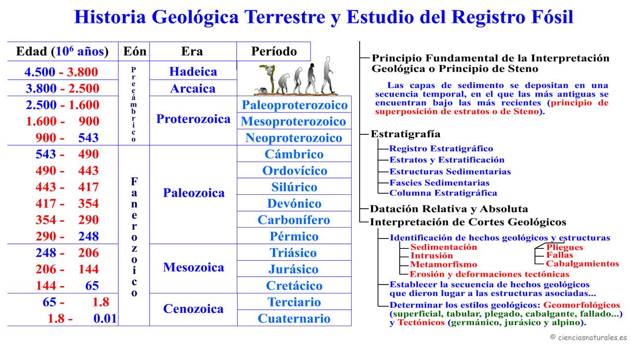 Historia Geológica Terreste y Estudio del Registro Fósil