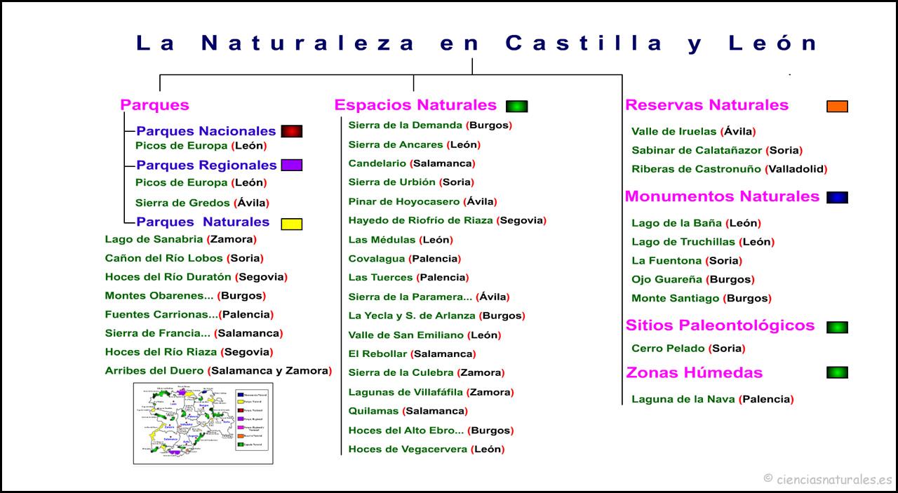 La Naturaleza en Castilla y León